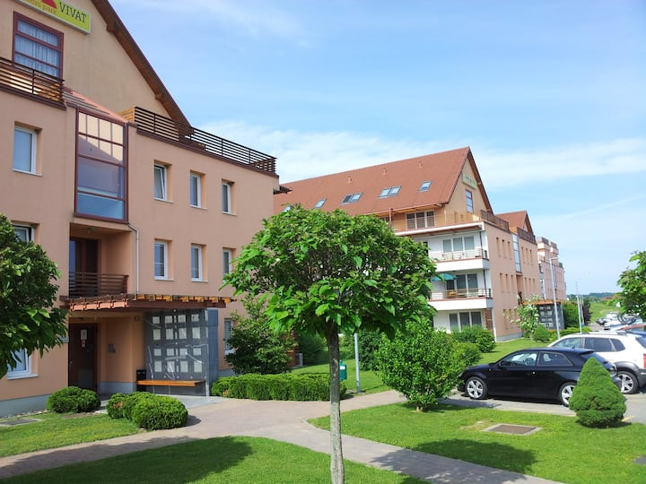 Apartments Manita