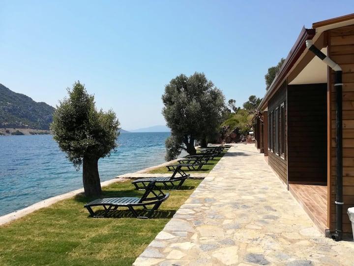 Selimiye - Olive Houses