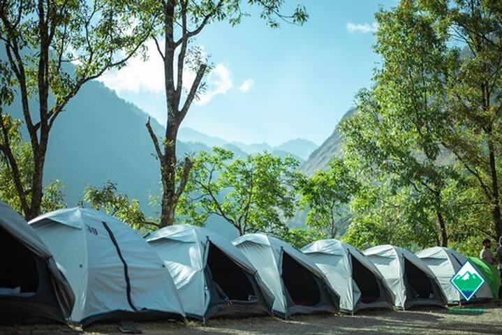 Camp Yedhika - Hornbill Festival