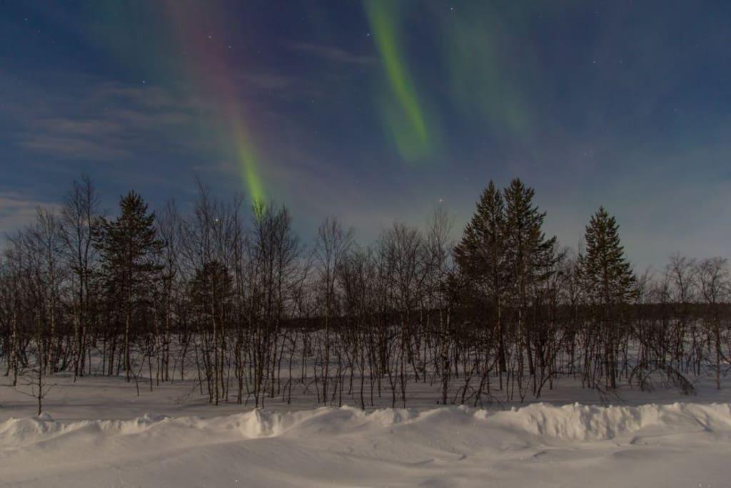 Aurora Borealis, Nordlichter, Polarlichter