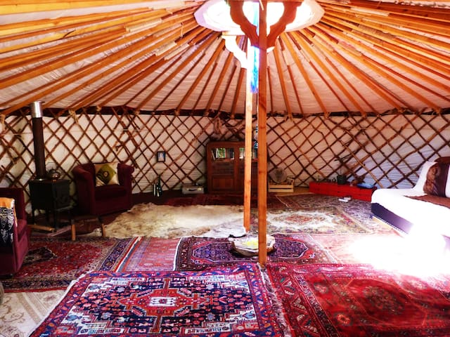 Off-grid, handmade yurt in lush forest - Groningen - Iurta