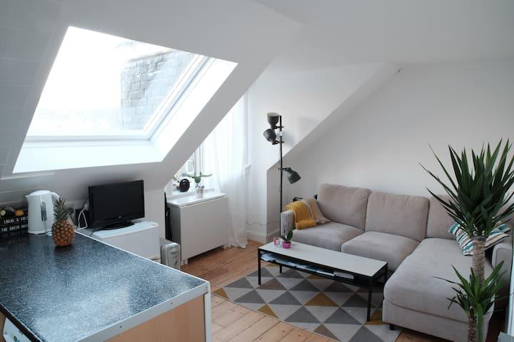 Bright attic in Leith