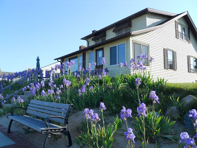 Cornfield Point Beachfront Cottage - Old Saybrook - Huis