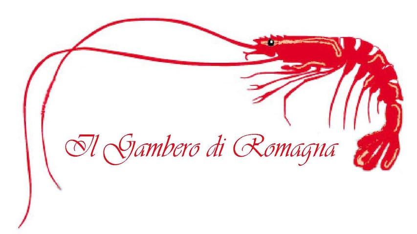 B&B Gambero di Romagna - CESENA - Cesena - Flat