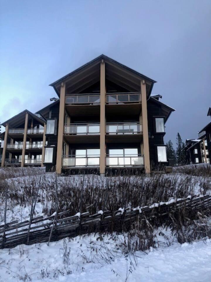 Romslig leilighet i ÅreBjørnen - ski in/out.