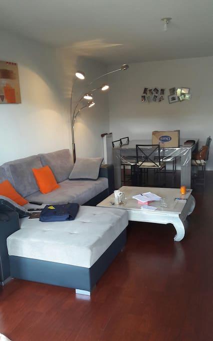 Spacieux salon 30 m2