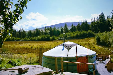 Beautiful yurt in amazing mountain/forest location