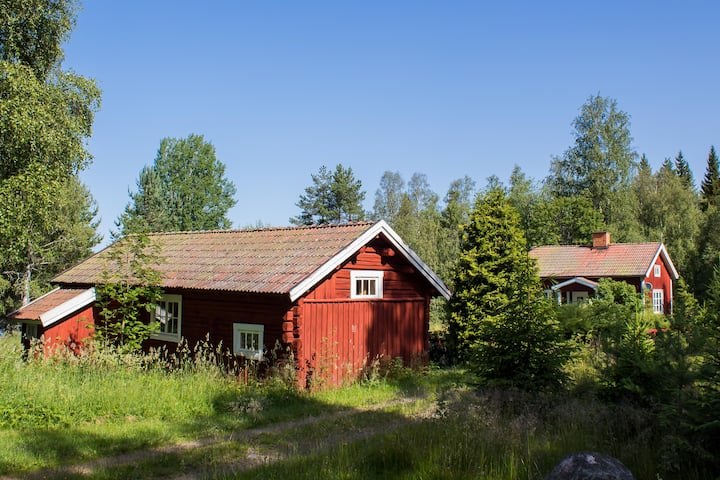 Only House at the Lake: Swedish Beauty