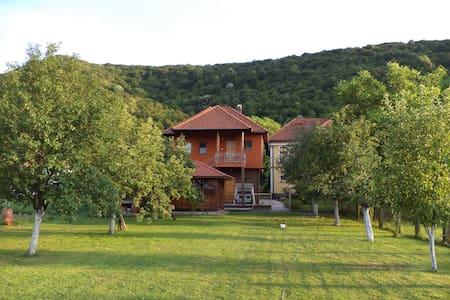 House with big green garden on river Una, Bihac - Bihać - Дом