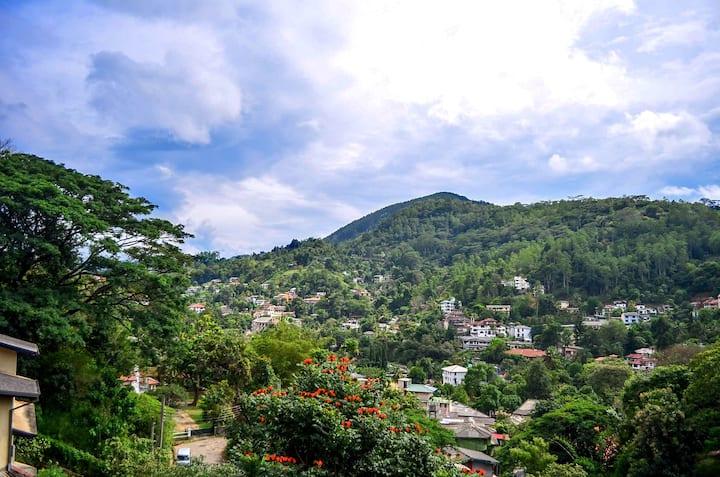 Villa Nine Kandy