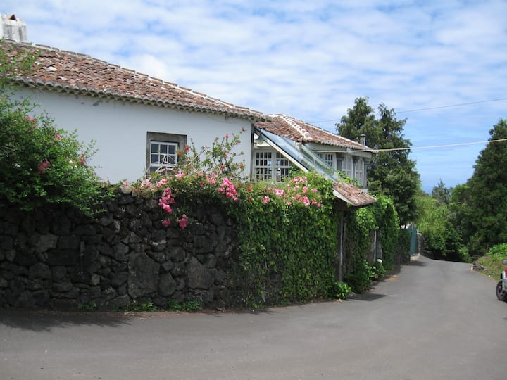 Unforgettable paradise in Terceira!