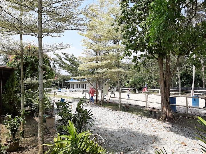 Horses Farmstay, 1hr to Kuala Lumpur, Lenggeng N9