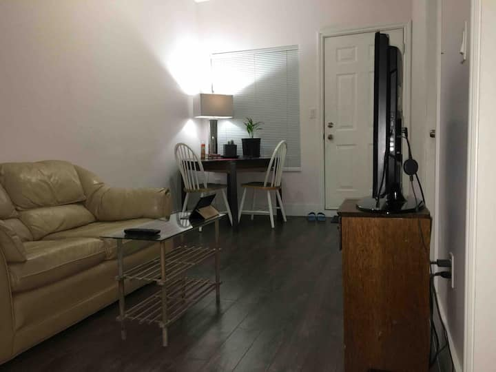 Private Room (in 2 Bedroom Apartment Downtown)