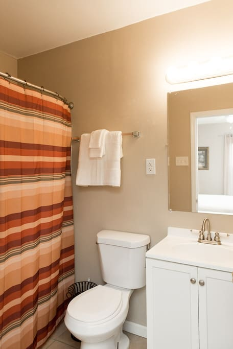 The bathroom, located inside the bedroom!