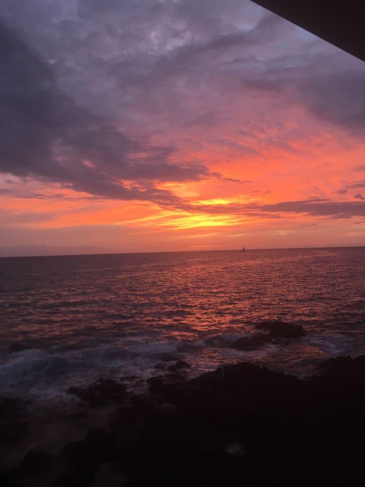 Oceanfront Delight