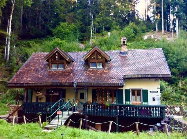 Ferienhaus Blackforest