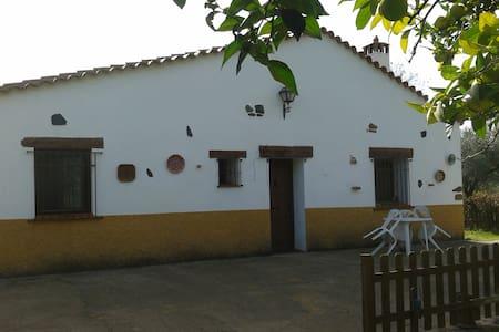 casa campo - Aracena