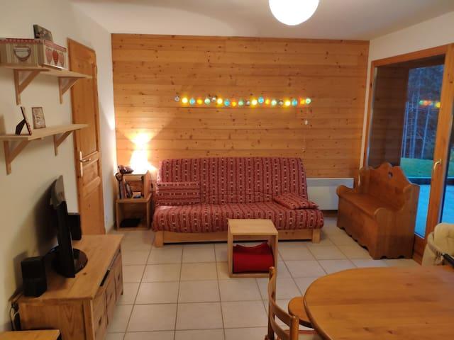 Appartement 3* (2-6 pers) à Sommand - Praz de Lys