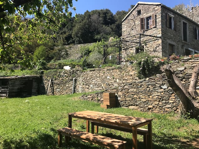 Charming house to rent in Corsica