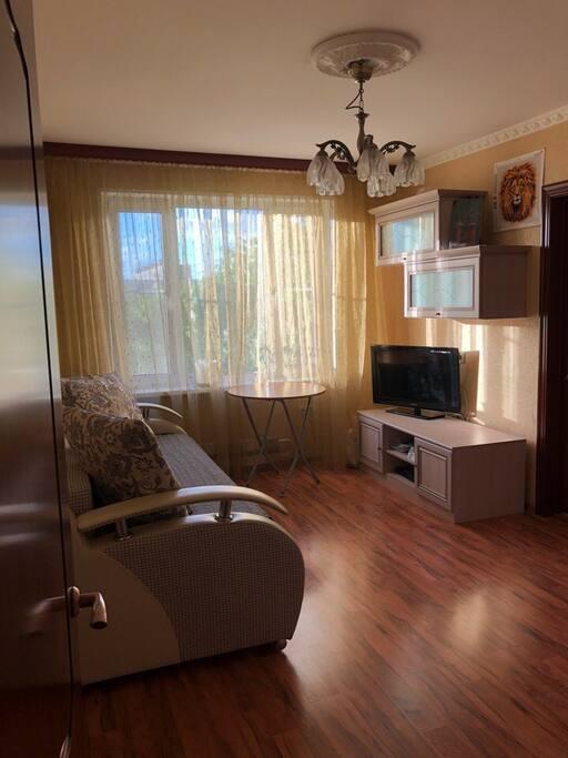 Комната № 1 - зал, диван кровать расстилается до больших размеров, так же в комнате имеется большой телевизор, комод и шкаф.