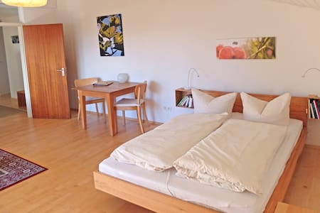Tuniberg apartment by the vineyard - Friburgo