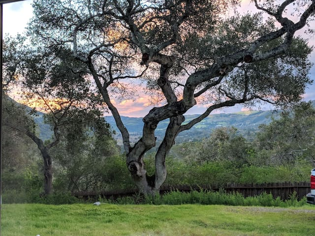 Carmel Valley Village Serenity