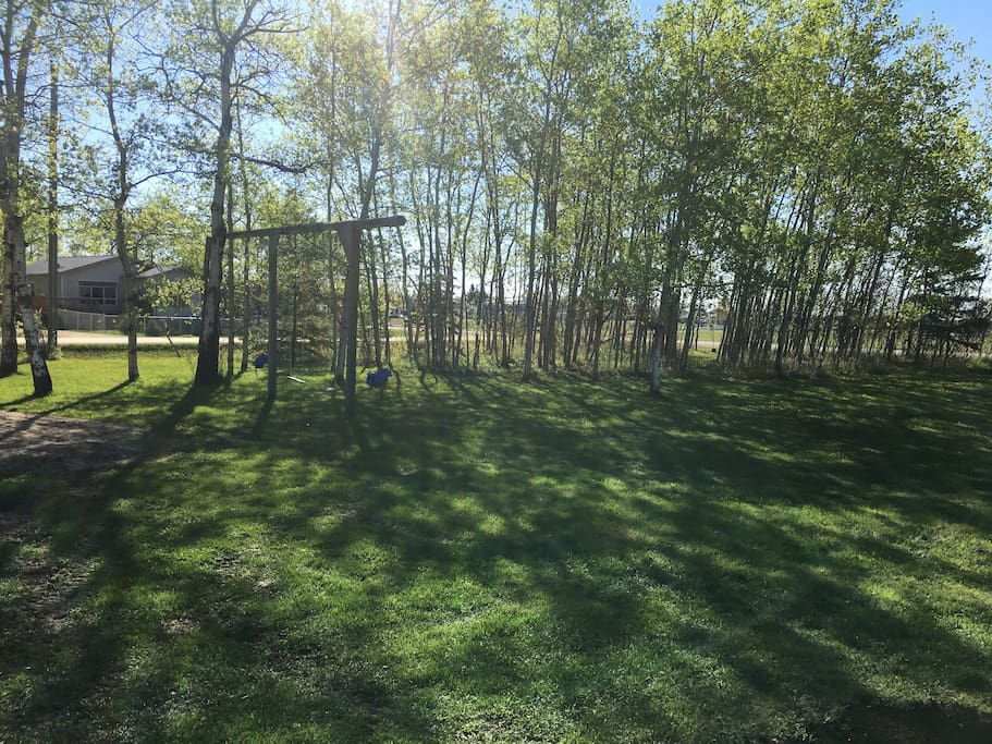 Large yard with swings, creek,  fire pit and picnic area