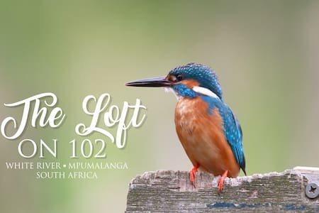 The Loft on 102 - White River
