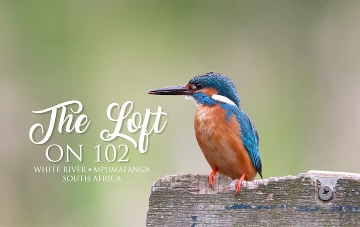 The Loft on 102