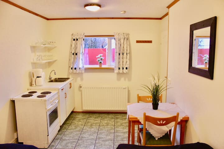 Kitchenette with an oven and a fridge.