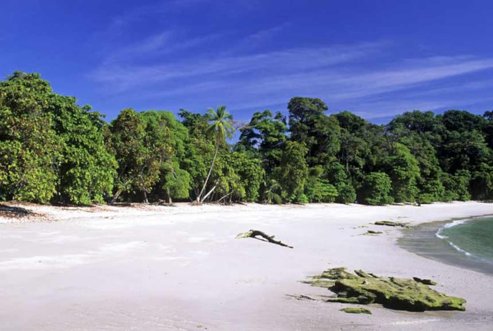 We are just steps away from Costa Rica's most beautiful beach.