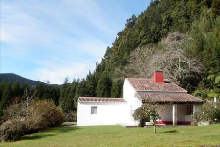 Stunning Luxury Cedars Huts in an EXCLUSIVE and IDYLIC location. - Furnas - Dom