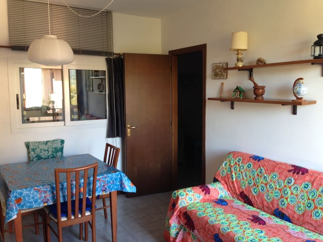 COZY APARTMENT 20 MINUTES FROM 5 TERRE - Carro - Apartment
