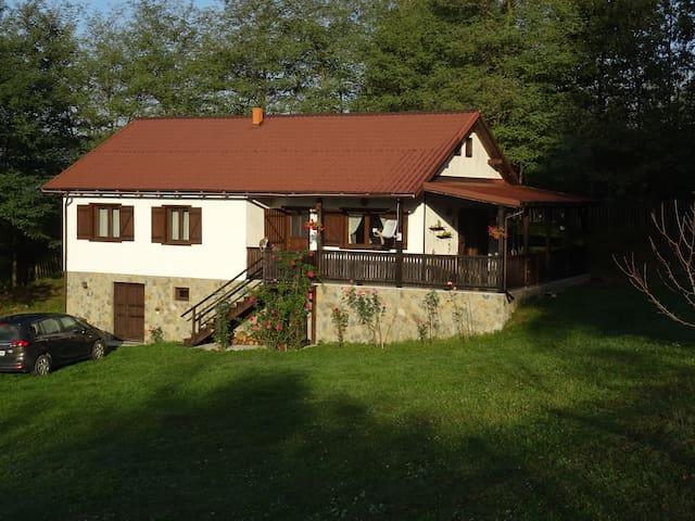 "The House ""La Măndița"""