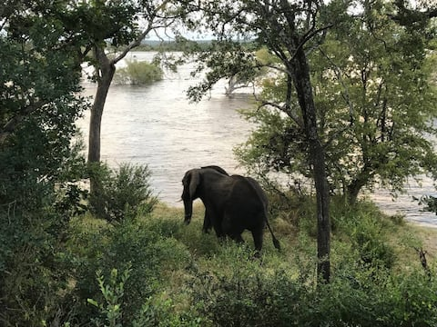 Zambezi National Park Chalets - Chalet 3