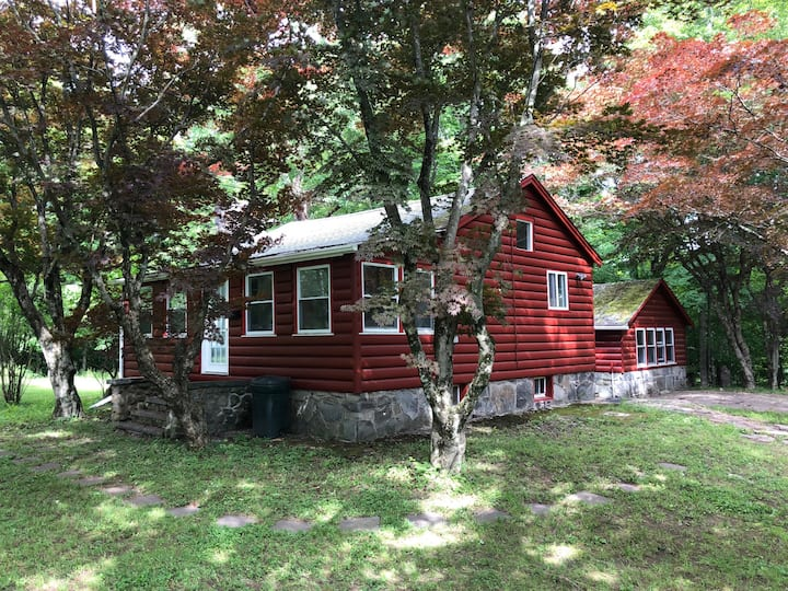Charming house on 8 wooded acres near Bethel Woods