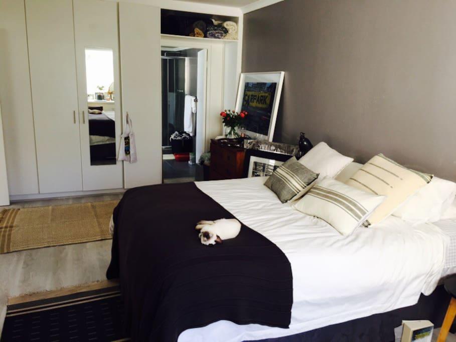 Big comfy bed in huge bedroom.