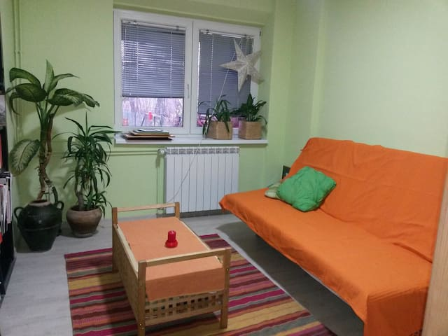 Cozy and friendly room in Pancevo - Pančevo - บ้าน
