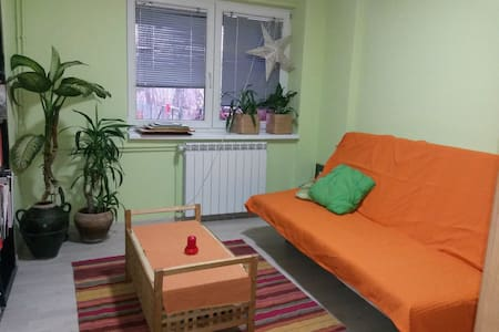 Cozy and friendly room in Pancevo - Pančevo