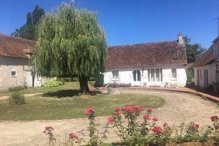 Maison ancienne dans le parc de la Brenne