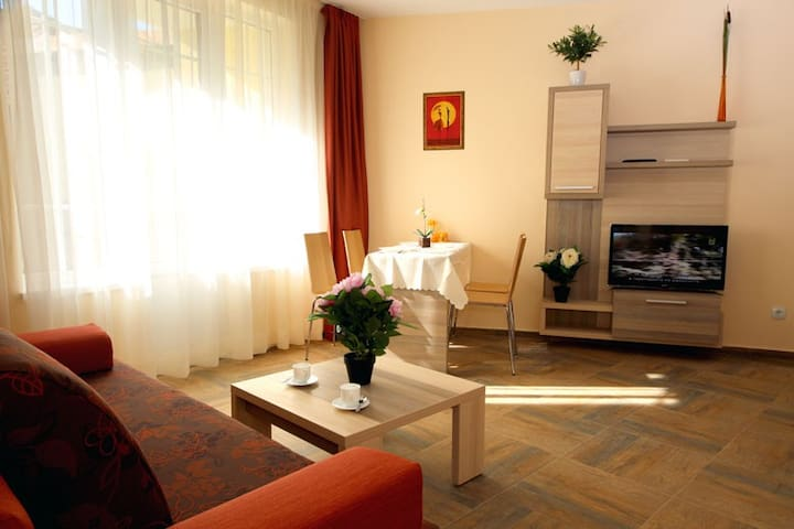 GREAT APARTMENT IN THE OLD TOWN - 3 - Veliko Tarnovo - Apartment-Hotel