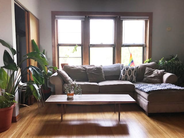 Sunny One-Bedroom Apartment in Andersonville