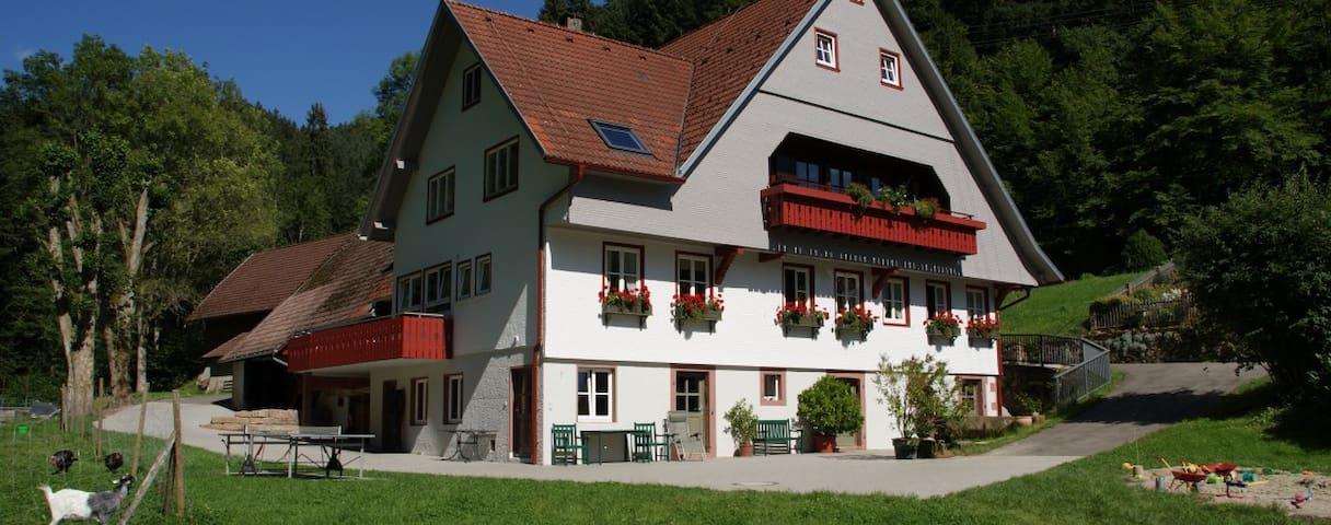 Wohnung im 1763 erbauten Bauernhof - Schenkenzell - Apartamento