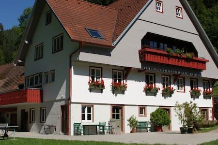 Wohnung im 1763 erbauten Bauernhof - 申肯策尔 (Schenkenzell) - 公寓