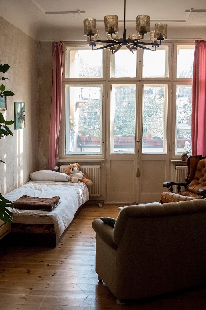 big room with balcony and cat