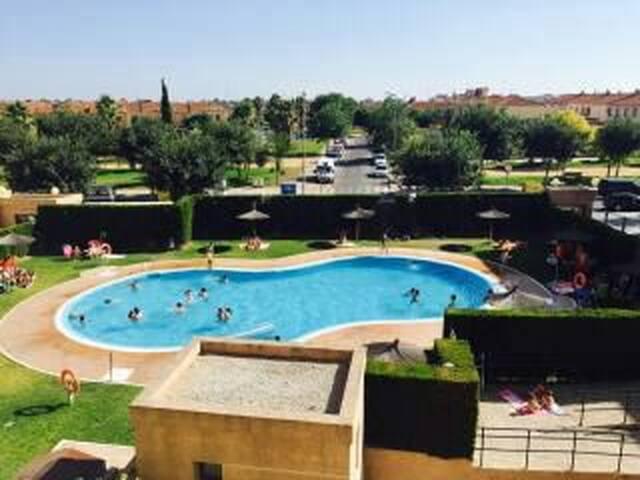Excelente apartamento con piscina - Jerez de la Frontera, Andalucía, ES - Apartamento