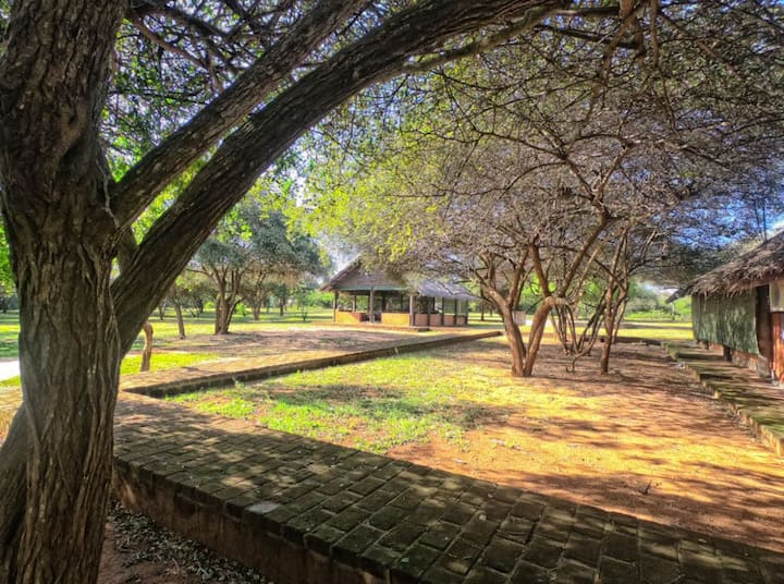 Governor's Camp Yala