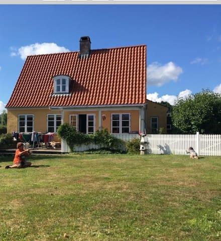 The yellow villa with garden
