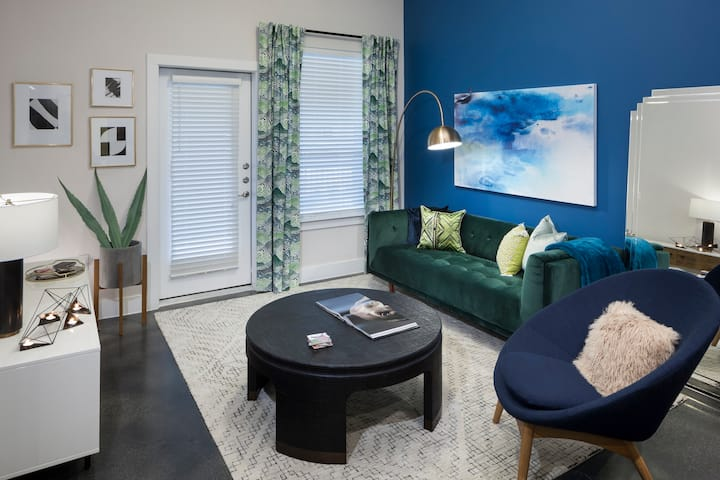 Professionally maintained apt   1BR in Austin