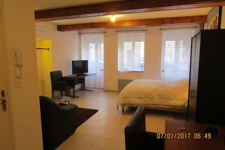 A louer par nuit, semaine, mois,tres jolie studio - Chauffailles - Apartament